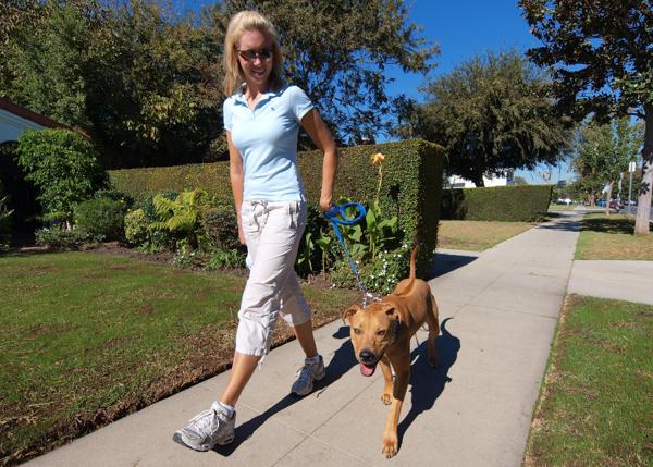 dog walker los angeles