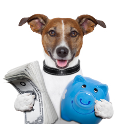 How much is a dog walker?